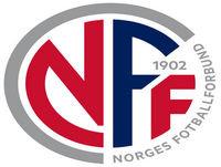 21. Tidenes første landskamp i eFotball