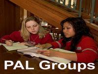 Professional Identity Development of PAL Facilitators