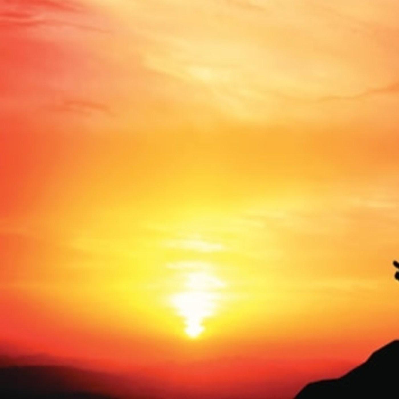 1. Audiolibro Conversaciones con Dios