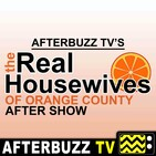 """""""Florida Fun and Fury"""" Season 14 Episode 17 'Real Housewives of Orange County' Review"""