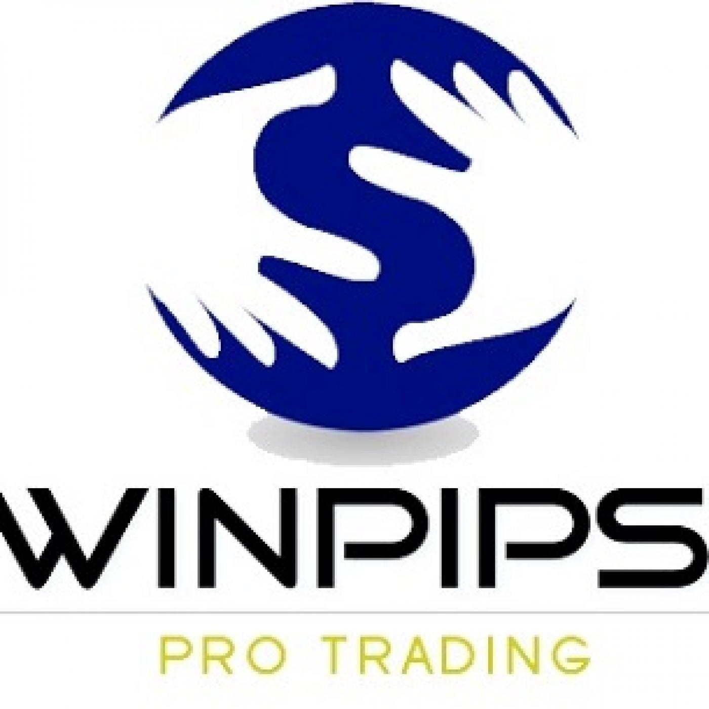 Winpips   Trading en Forex