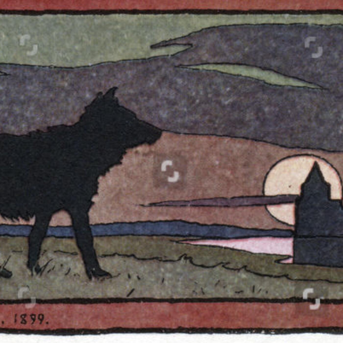 O Foxo do Lobo
