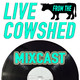 Live From The Cowshed - Ep24: Busy Puppy - Electronica / Down Tempo