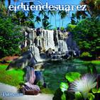 BSO Publicidad Jingle Palmetum Santa Cruz (2014)