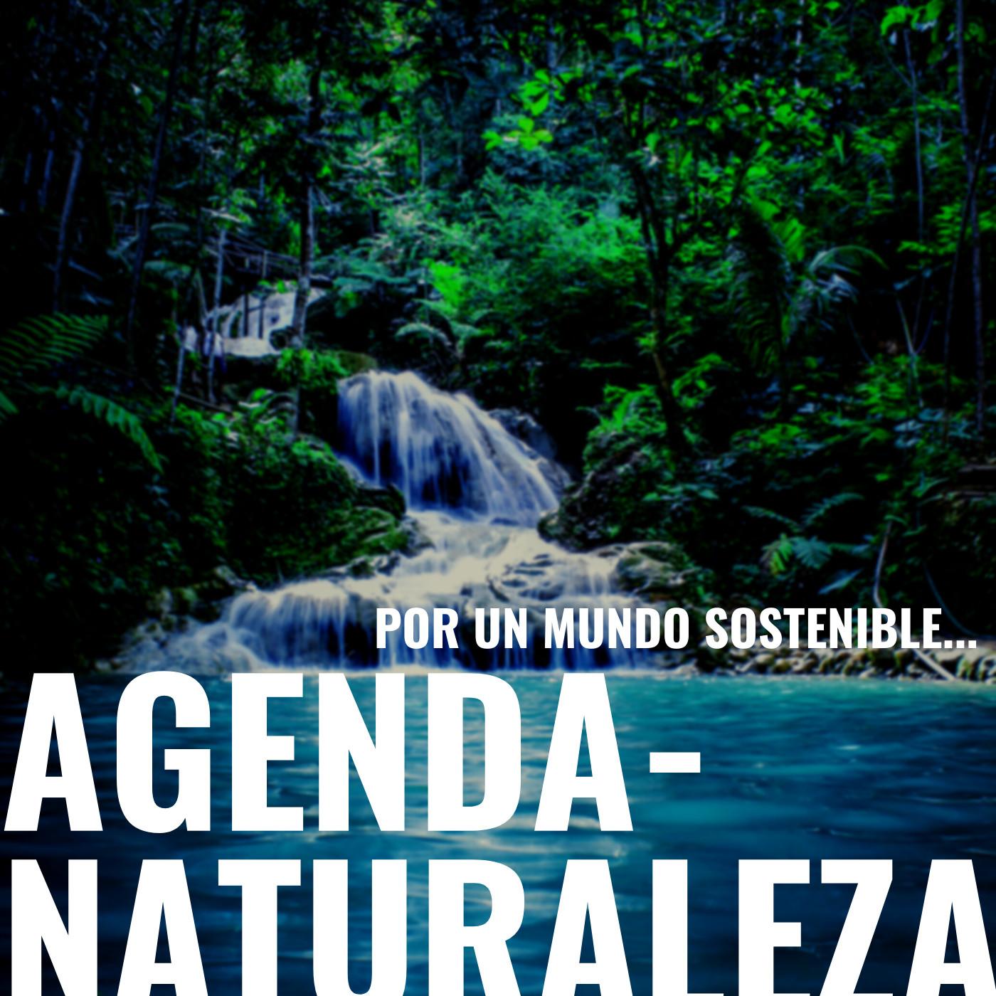 Agenda naturaleza 107. plasticos imparables.