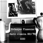 VOL. XII EXTAMPAS FLAMENCAS 2020