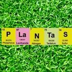 Podcast Fascinación por las plantas