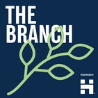 The Branch #15: The Code Breakers