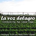 La voz de los domingos delagro 24-03-2013