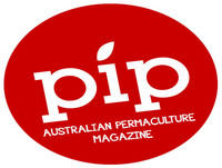 Pip Permaculture Podcast #14: Keeping a House Cow With Emily Stokes