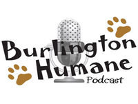 Burlington Humane Podcast, Episode 17: What to do if your pet gets lost, the joys of Senior pets and pets with specia...