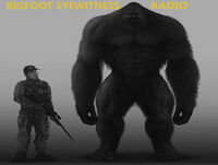 Bigfoot Eyewitness Episode 239