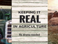 50 Episodes of Keeping Ag Real | Special guest Jeff Schweigert & we talk about the Keeping Ag Real Road Trip, Hog...