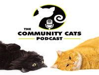 A Best of CCP Episode! Adam Myatt, The Cat Man of West Oakland