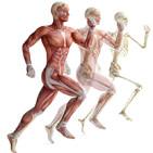 Cuerpo Humano y Salud