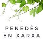 Sèries PeX: Entrevista a Martina Tresserra i Xavier Docampo, creadors de 'Minut feliç' (05.06.2019))