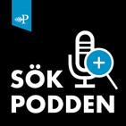 #50 Städmani