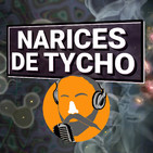 Narices de Tycho