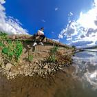 alex reflexion