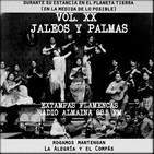 VOL. XX – JALEOS Y PALMAS -Extampas Flamencas