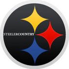 135: Week Three 2014, Steelers 37 Panthers 19