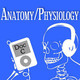 Lecture 20 - Introduction to Anatomy and Physiology