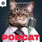 Podcat #031 - Catnip