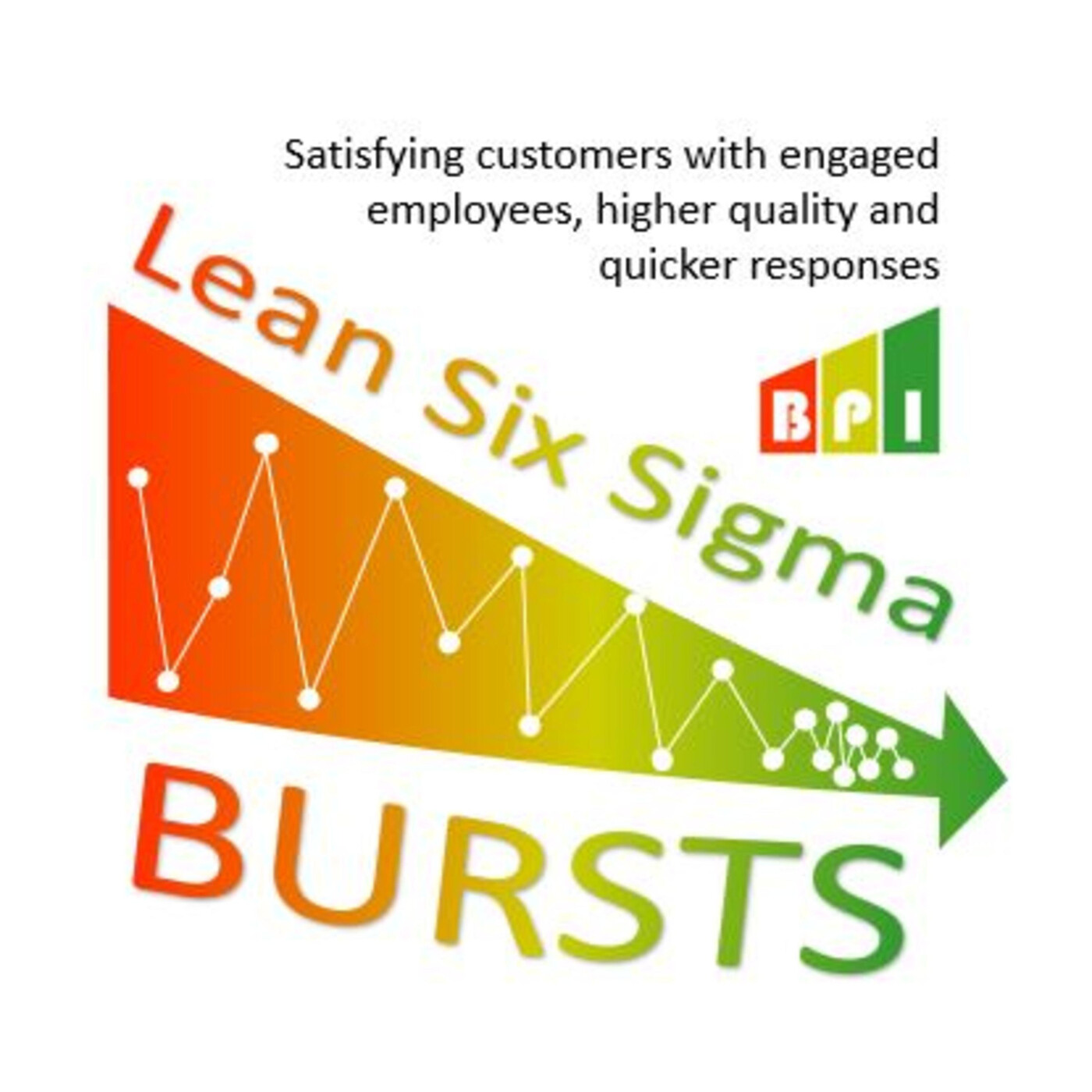 E1: Why are Six Sigma Black Belts paid so much?