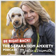 017 What Do You Need To Know About Your Senior Dog's Anxiety?