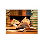 L'illa dels llibres