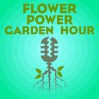 Flower Power Garden Hour 5: Joel Ledford