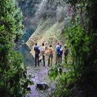 Paisajes Forestales Andinos