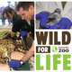 WFL 009: Behavioural Enrichment And Wild Encounters At The Toronto Zoo With Hollie Ross