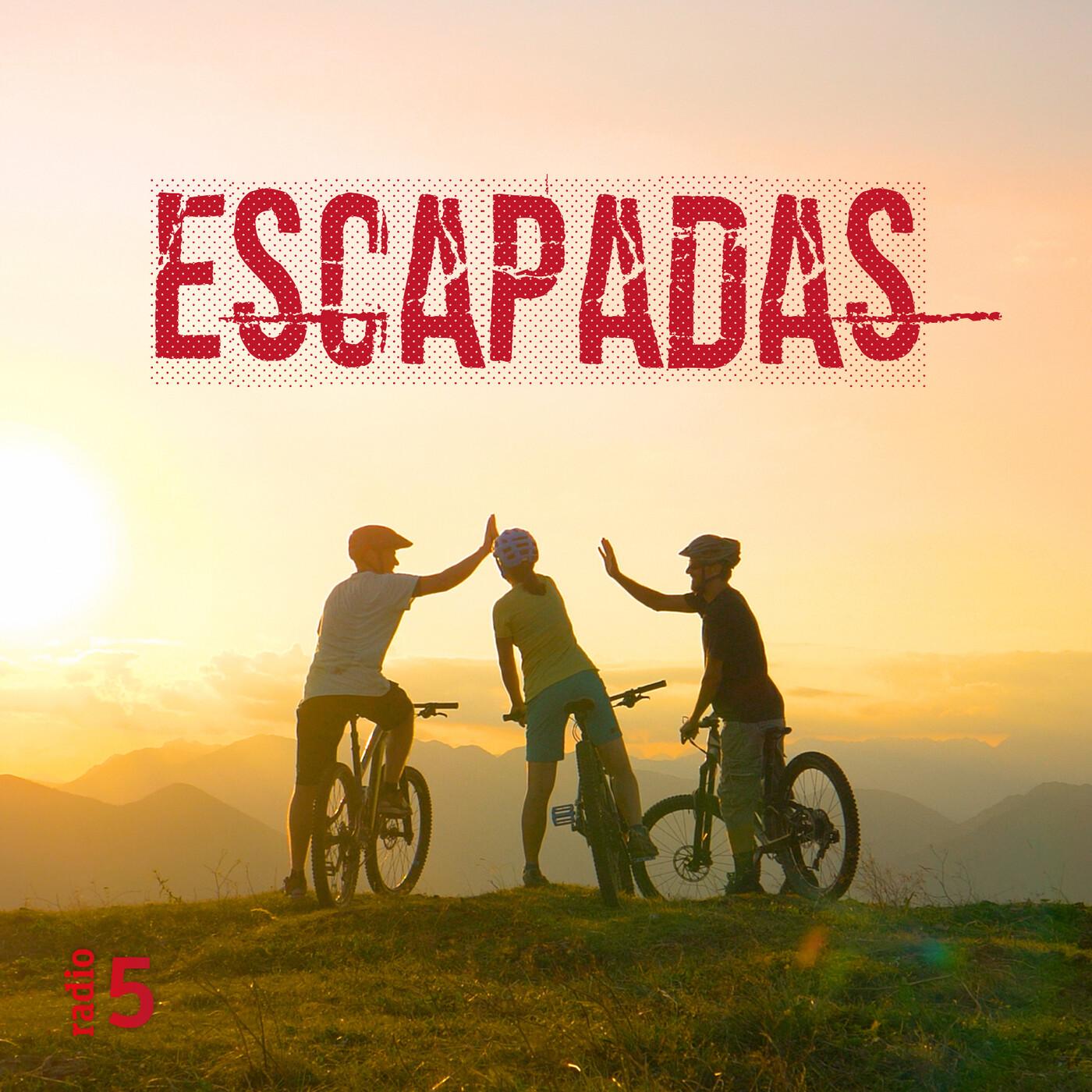 Escapadas - Los flamencos de Fuente de Piedra - 11/07/20