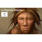 """Canal Extremadura. Sección """"La Especie Elegida"""""""