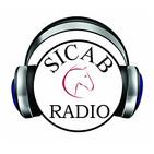 SICAB Radio / concursos