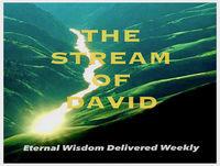 The Stream's Eternal Wisdom – The Stream of David