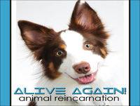 Alive Again - Episode 62 A Pet's Purpose