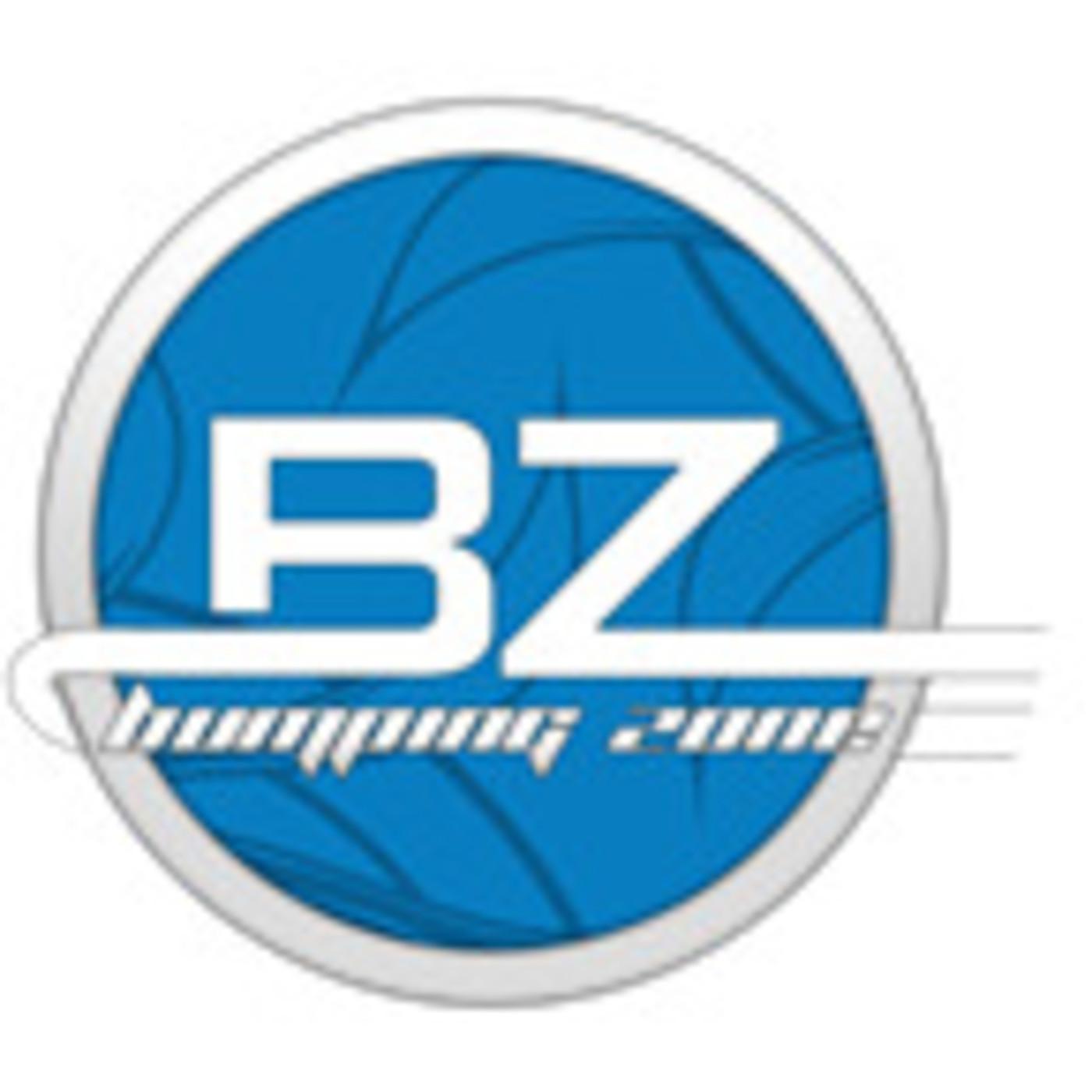 - Bumping Zone