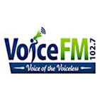 VoiceLib