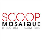 Scoop Mosaique