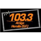 FM Amiga Hersilia 103.3