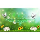Radio Segadores