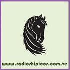 RadiosHipicos