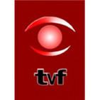 Tvflorida - Canal 4 Florida Uruguay
