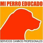 Mi Perro Educado