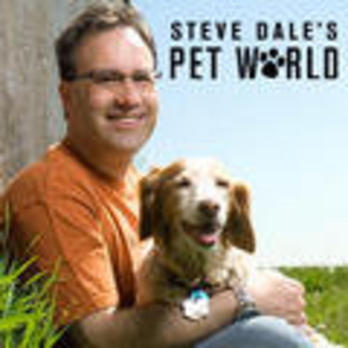 Steve Dale