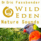 Wild Eden Nature Sounds by Dr