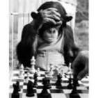 Paul Morphy Chess