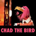 Chad the Bird